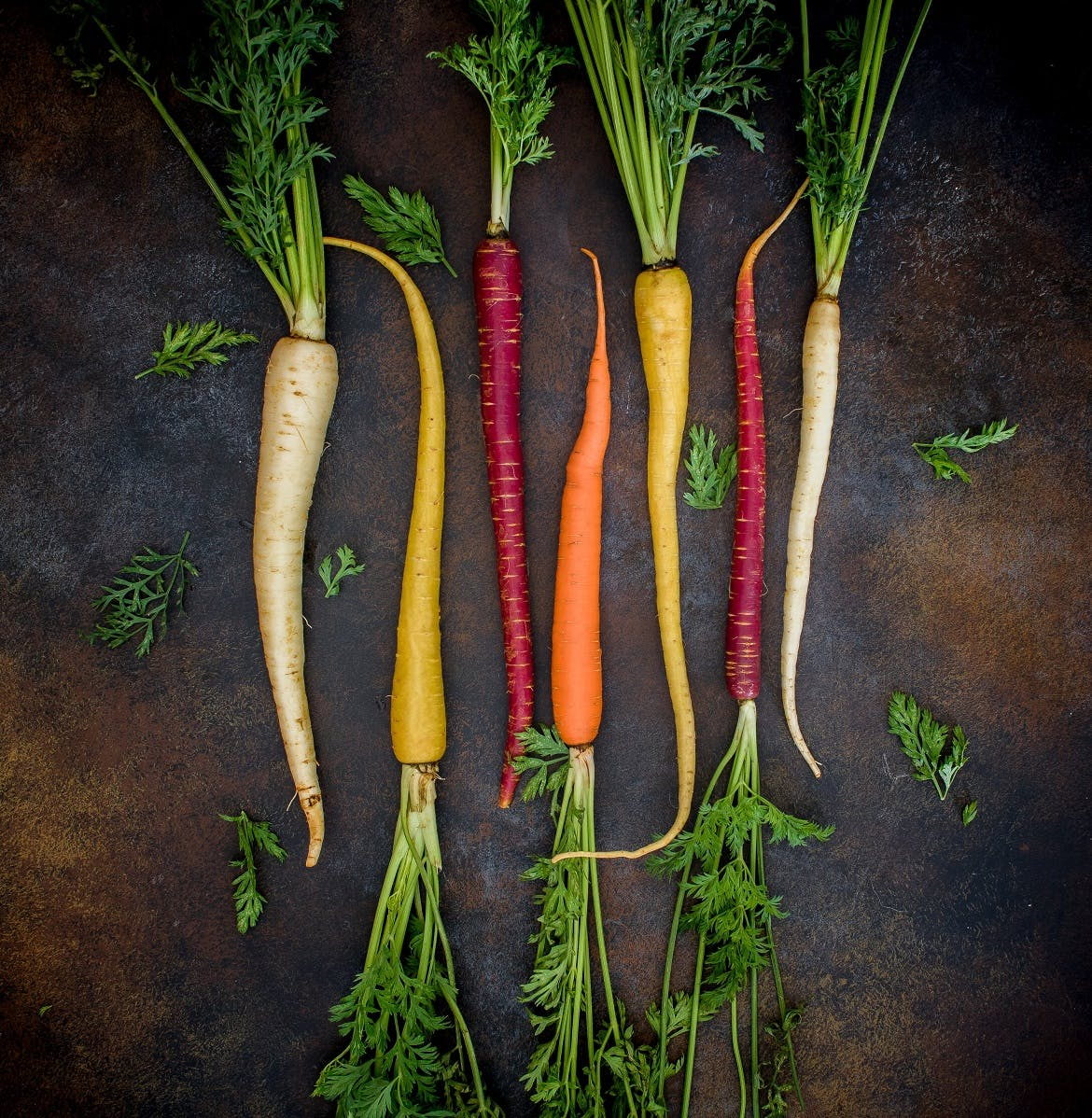 Various root vegetables laid out lined up next to each other.