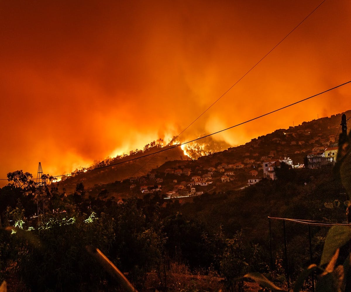 A wildfire blazes on the hillside above a town in Portugal. Rewilding helps build natural defences against such disasters.
