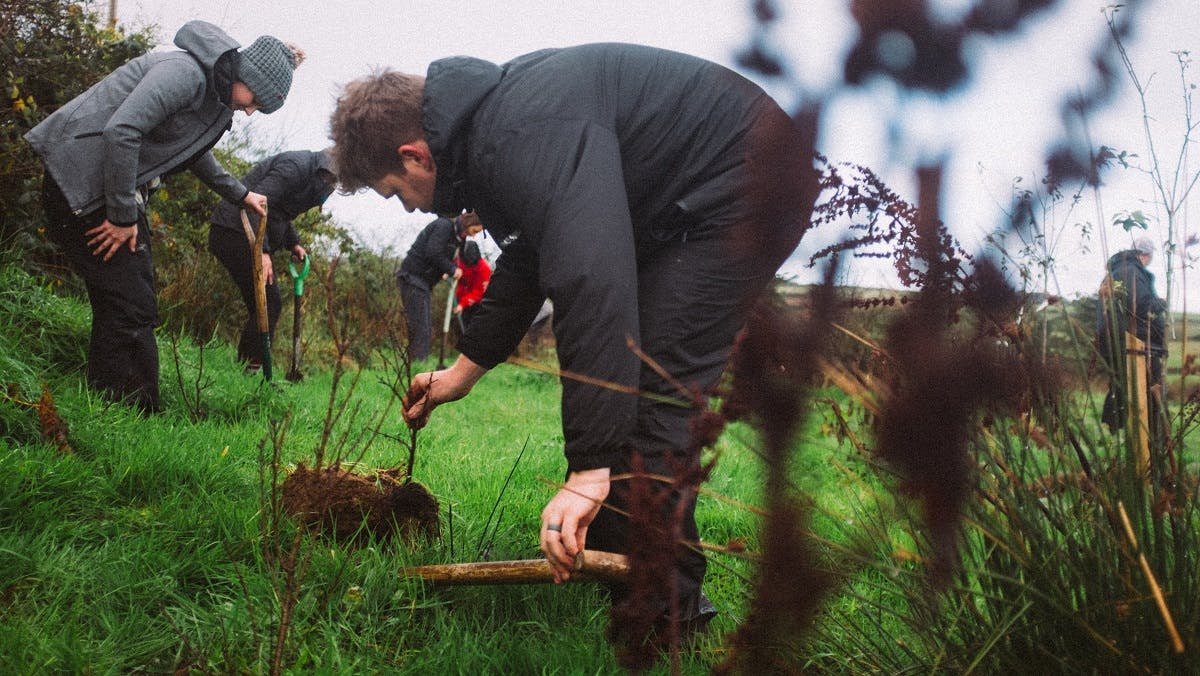 A group of young people planting native trees in Ireland