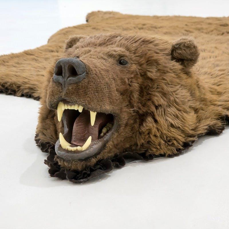 An example of a bear taxidermy.