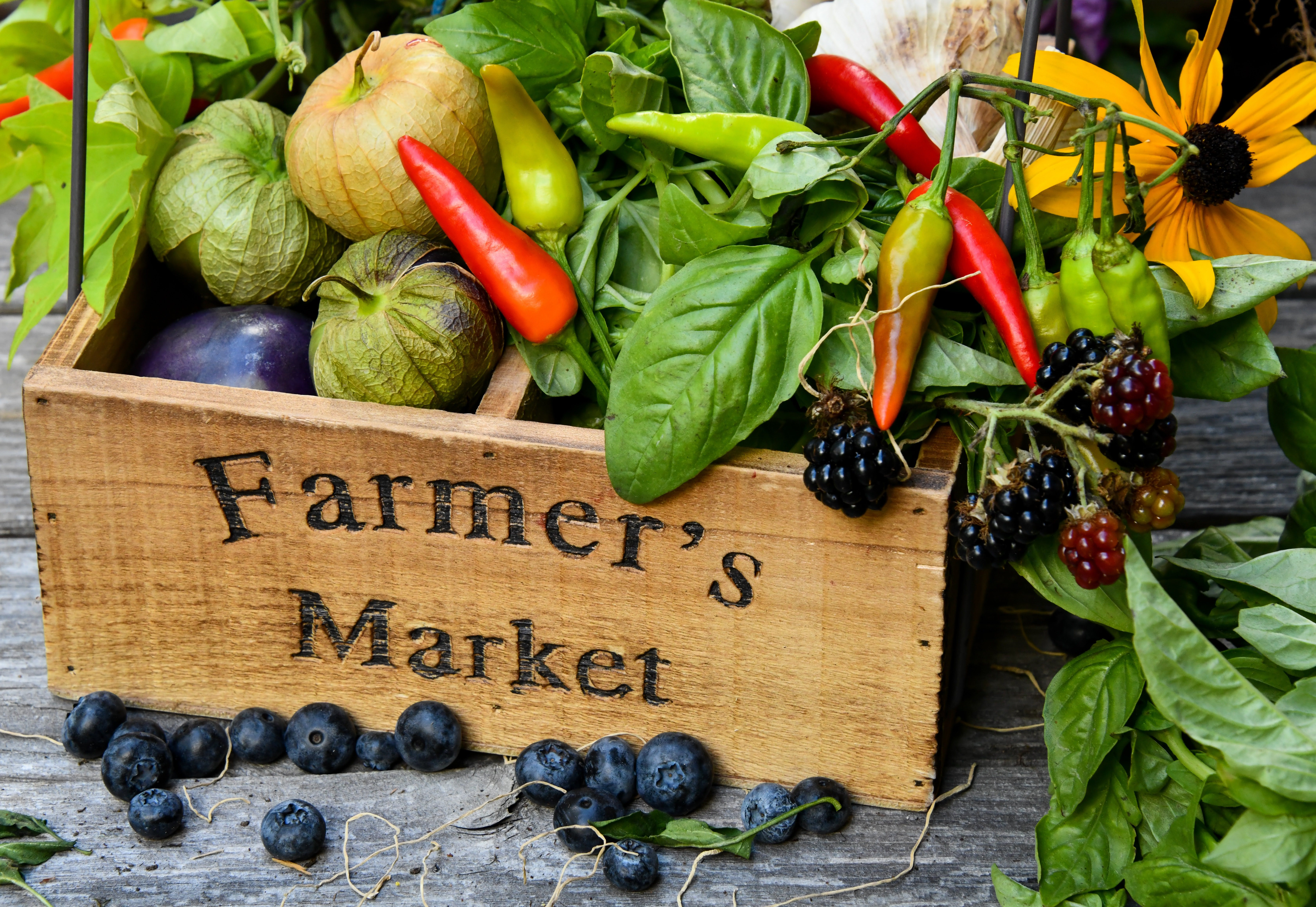 "Wooden box with the words ""Farmer's market"" written on it and filled vegetables"