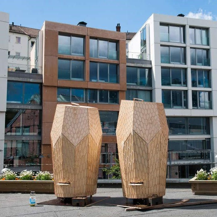 Two man-made beehives located in the city of Oslo acting as wildlife corridors for bees.