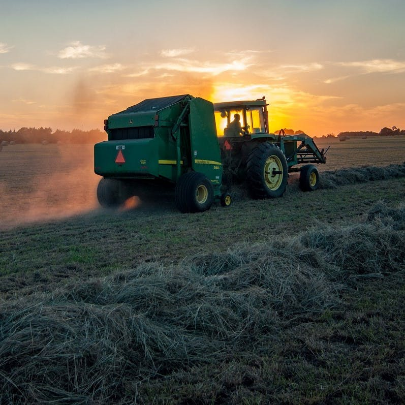 A tractor and combine cutting hay at sunset.