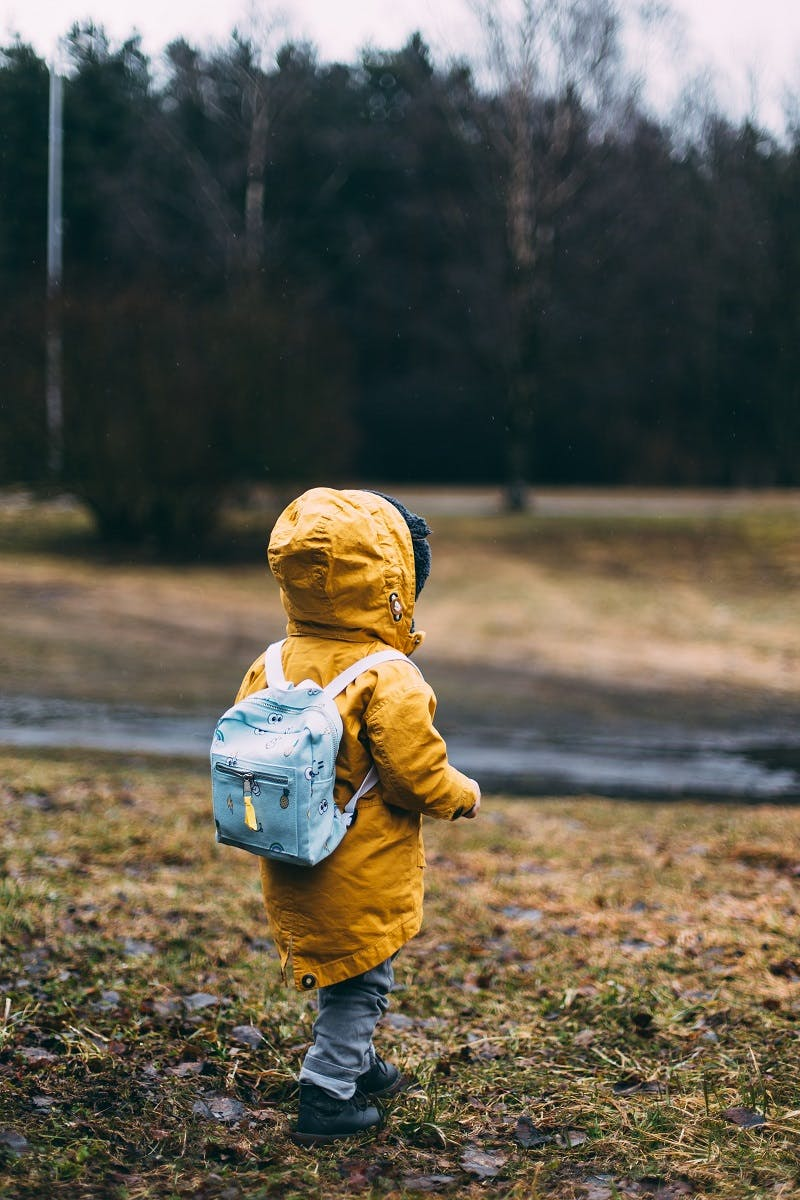 A child walking in a park close to some woods.