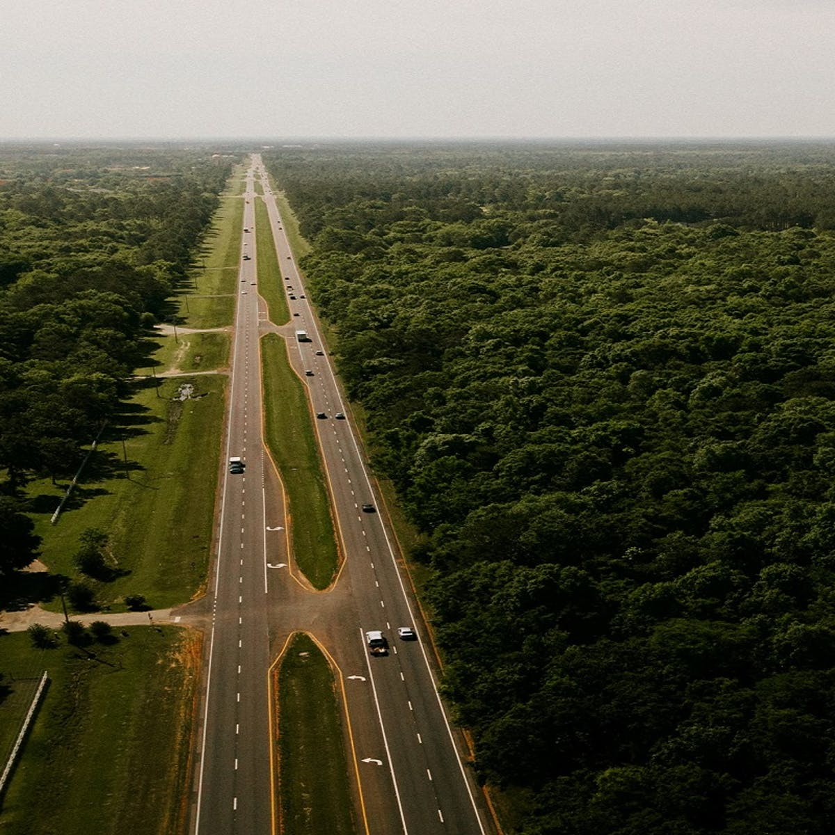 An interstate splits through a forest. The omission of wildlife corridors on an interstate like this means no safe crossing for animals.