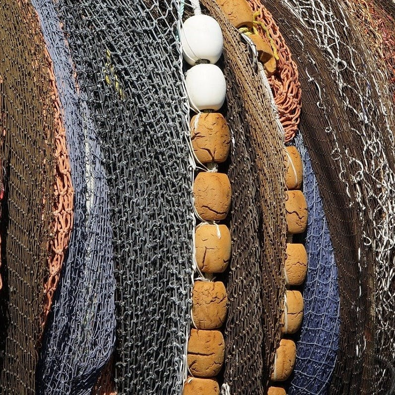 Fishing nets lined up, a major threat to whale populations.