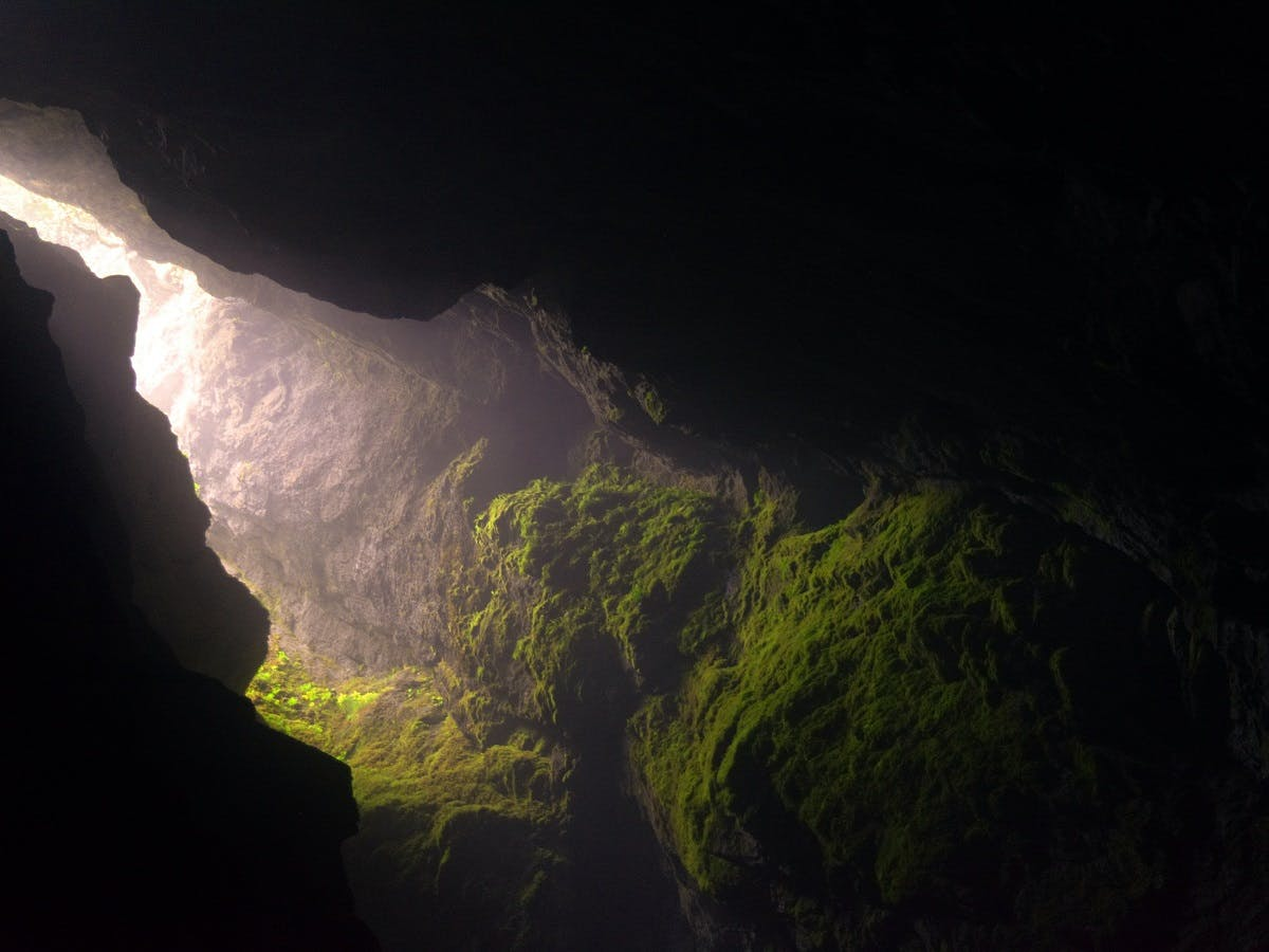 A deep and dark Karst cave, which would be home to an abundance of cave dwelling creatures including bats, the olm salamander and glowworms