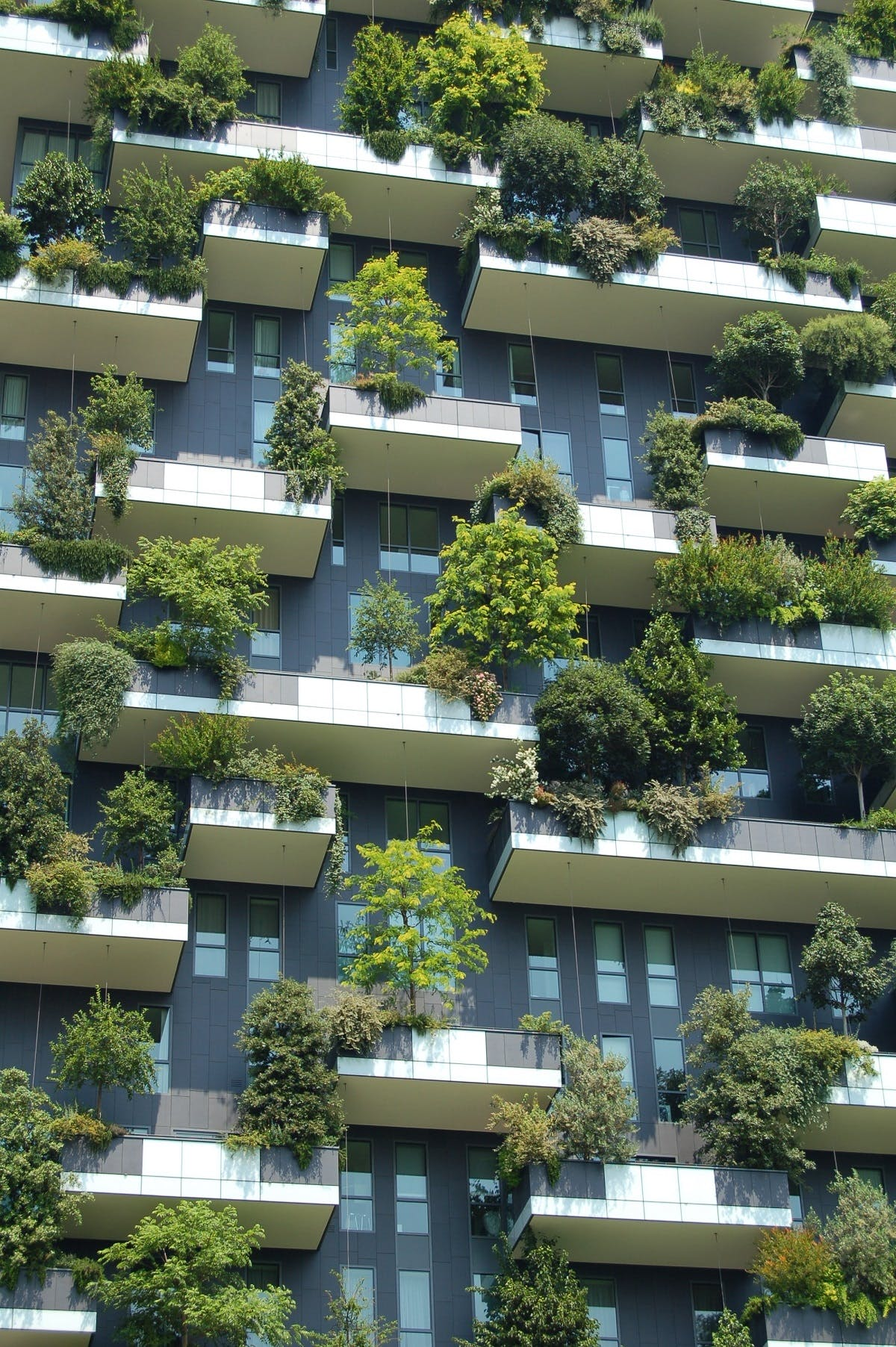 An apartment block with trees on every balcony