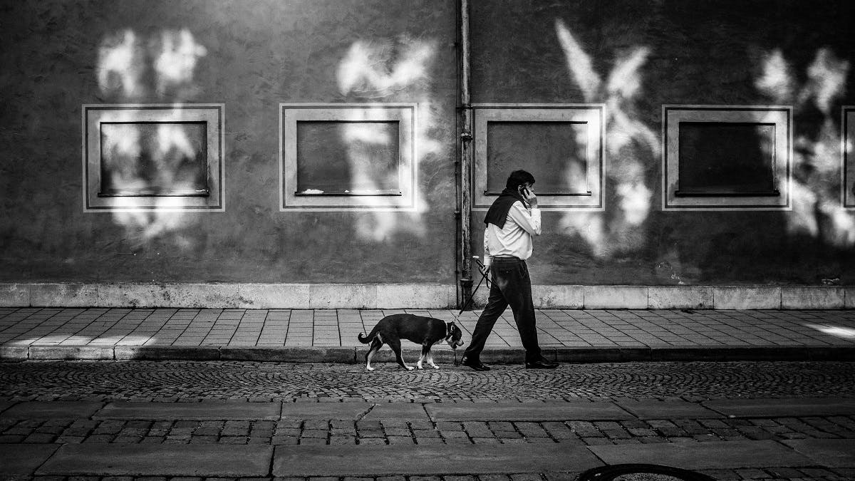 Ecological Boredom, is just one of the many interesting topics George Monbiot discusses in his book Feral. This is depicted her of a man on the telephone while walking his dog in a city.