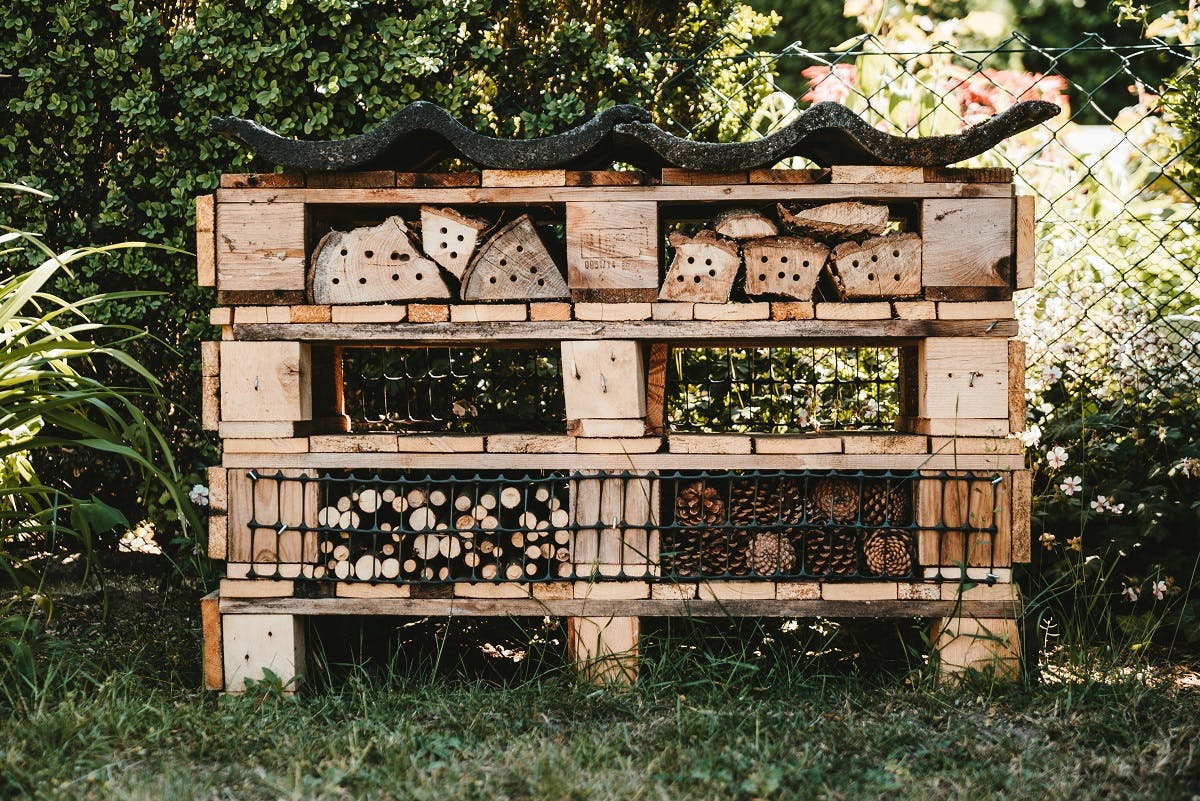 A large bug hotel built from used wooden pallets and old logs. An easy win when rewilding your garden.