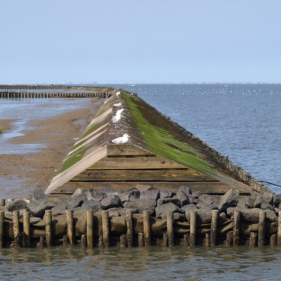 A sea defence to protect land from rising sea levels due to climate change.