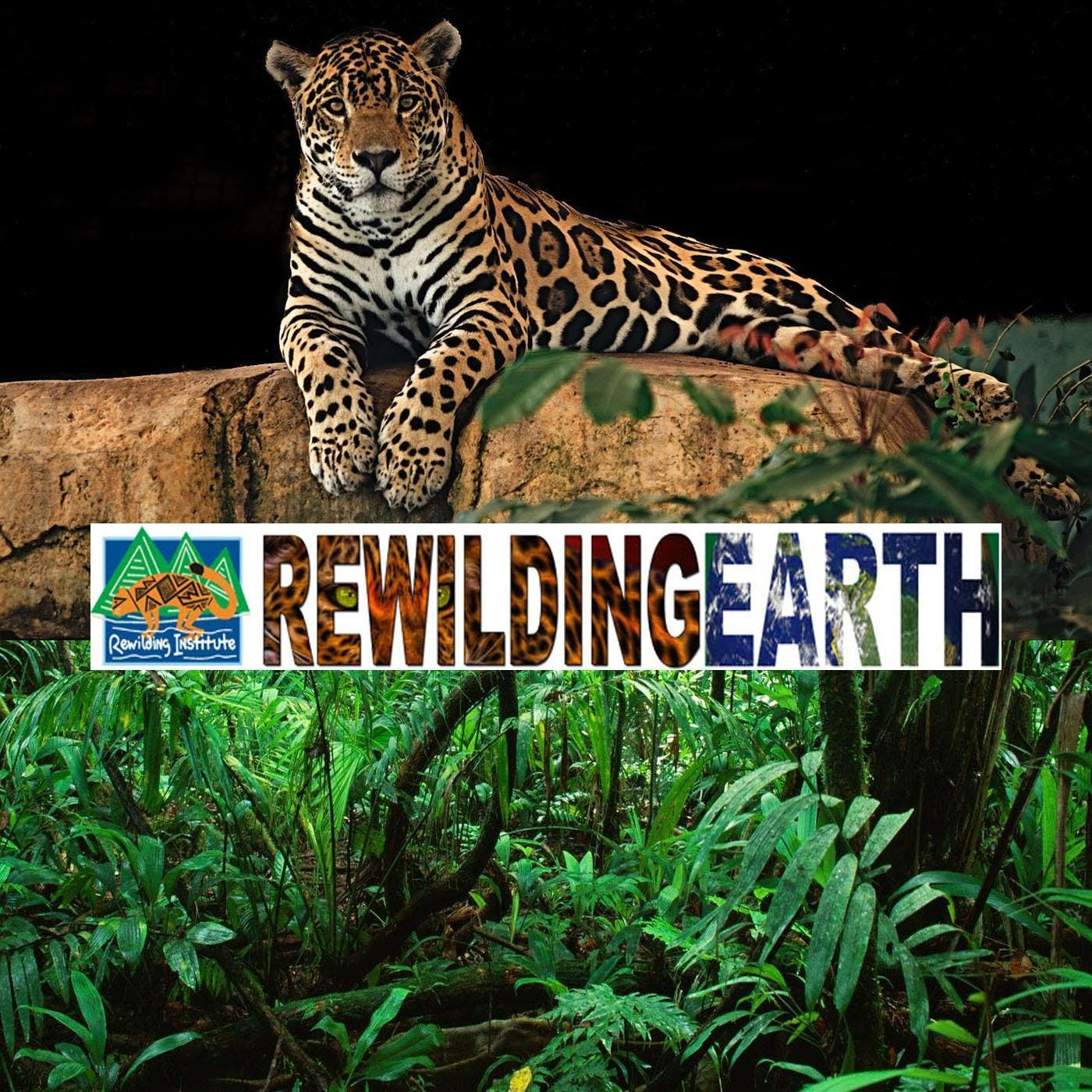The Rewilding Earth Mission podcast