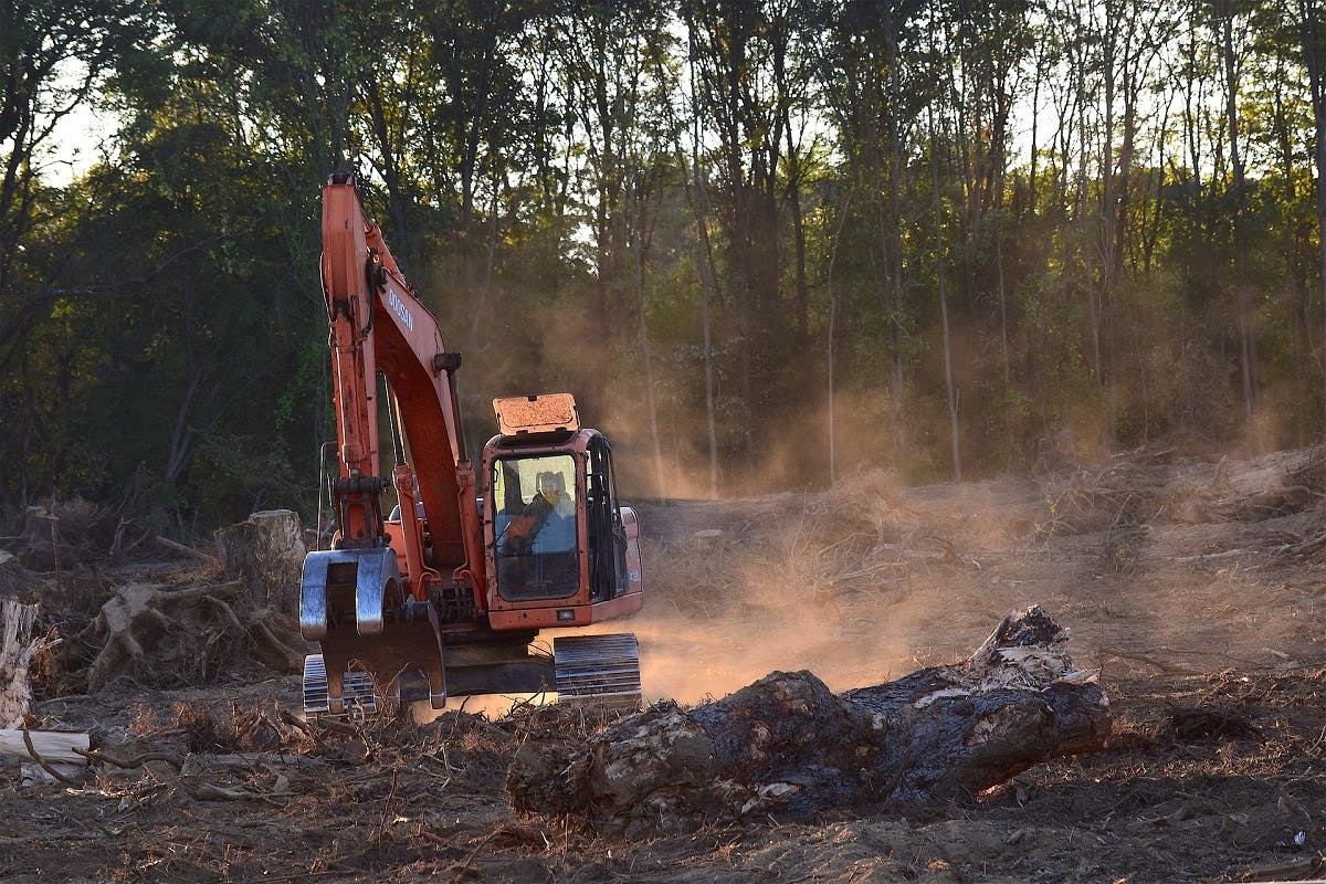 A large digger deforesting an area of rainforest. Going vegan will have a significant impact on lowering your environmental impact.