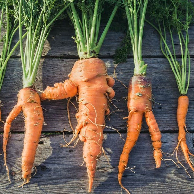 Imperfect carrots
