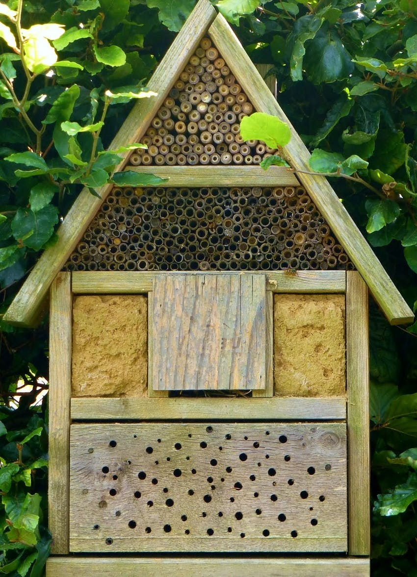 A bug hotel with green leaves behind it. Installing a bug hotel is one simple way to rewild your garden.