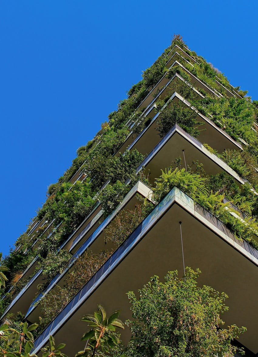 The view from the ground of a green walled and roofed building.