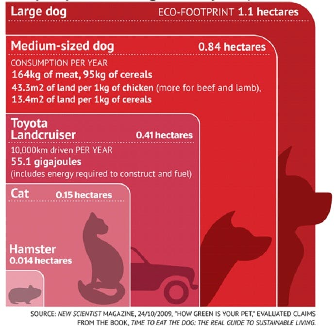 An info graphic depicting the carbon footprint of various sized domesticated pets.