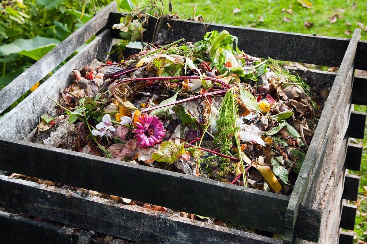 Wooden garden composter, a must when you rewild your garden.