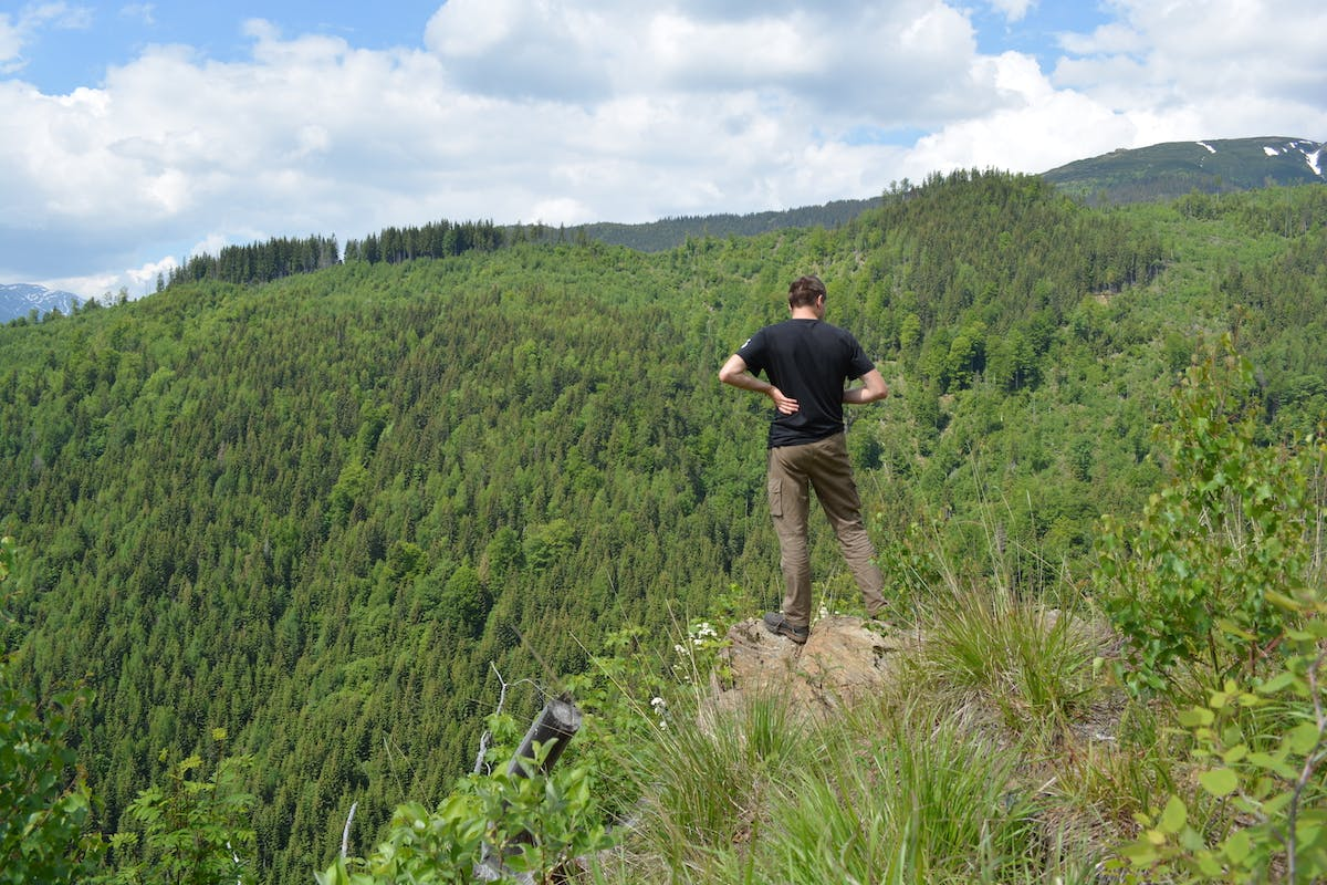 A ranger stands on a cliff overlooking a forested landscape