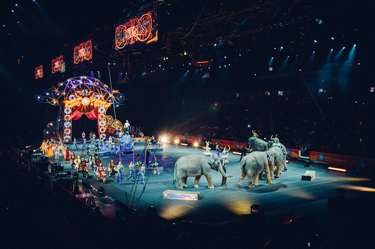 A circus cruelly using elephants as part of there display.