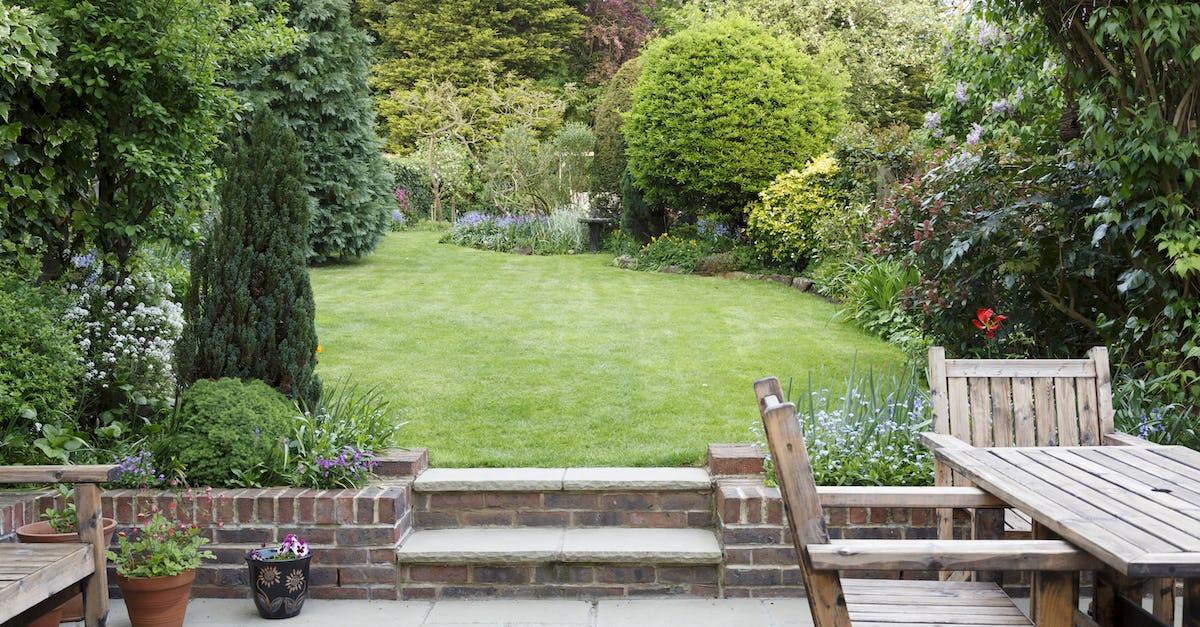 A beautiful London garden