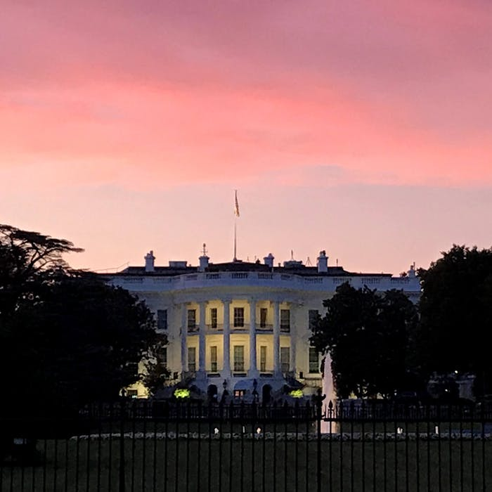 Trumps House