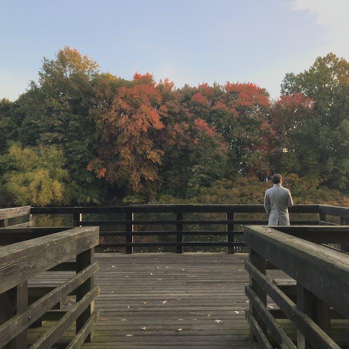 New England Falls