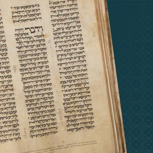 The Mystery of the Codex Valmadonna I