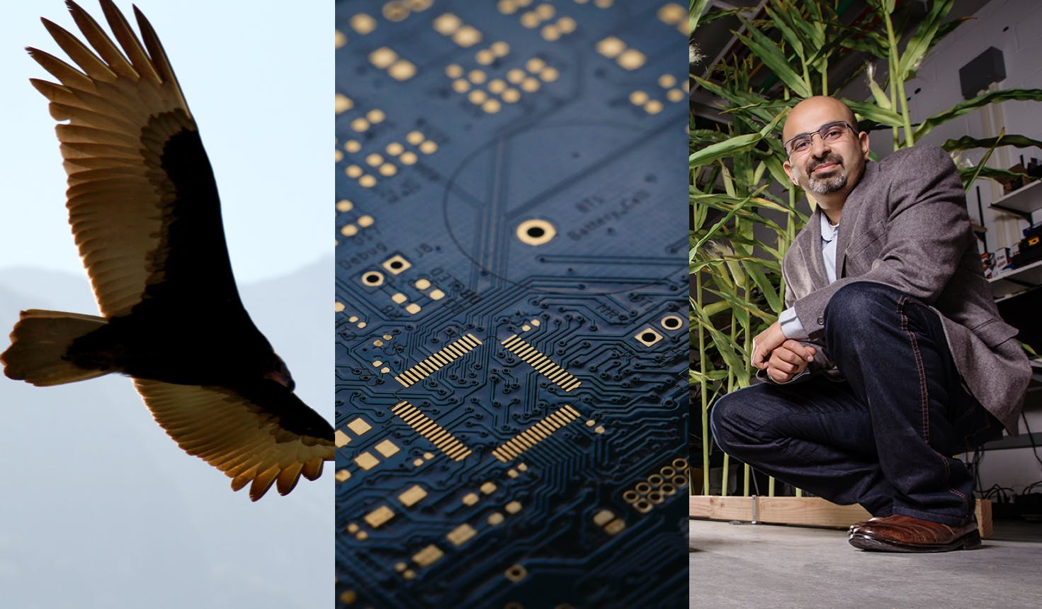New drone design takes notes from nature–Apple goes solo on next-gen Macbook chips–Illinois CS professor Girish Chowdhary discusses the future of autonomous farming