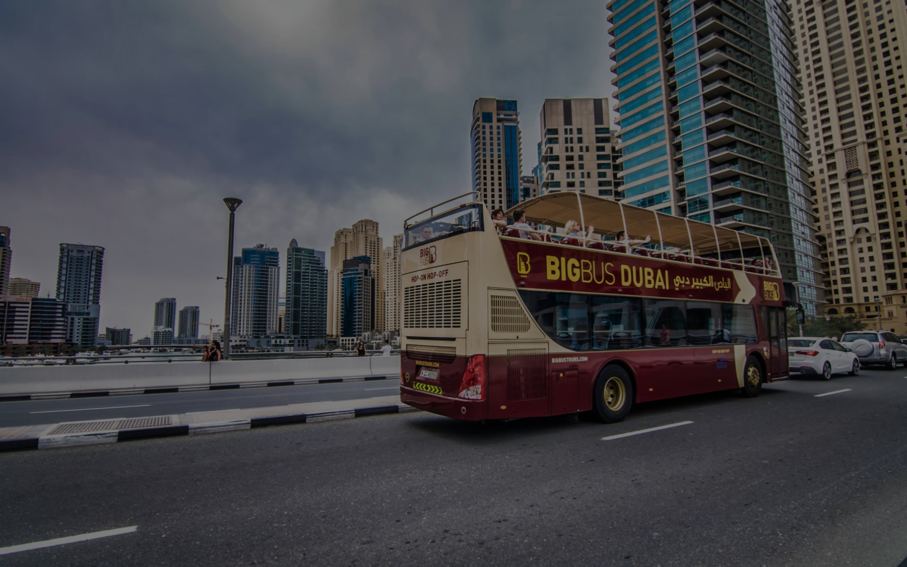 HOHO Bus Tours