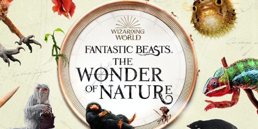 Fantastic Beasts™: The Wonder of Nature