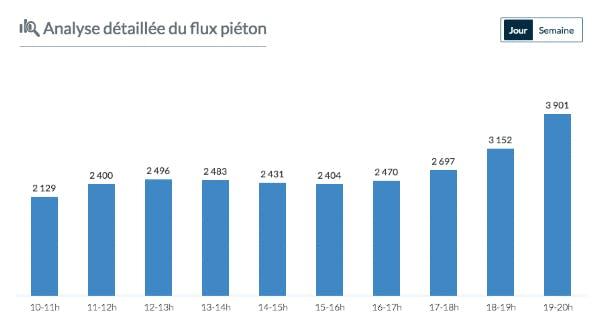 Analyse détaillé flux piéton