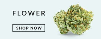 Buy cannabis online in Canada. Wide selection of the finest strains. Shop now.