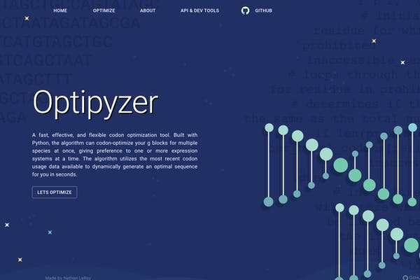 optipyzer-landing-page