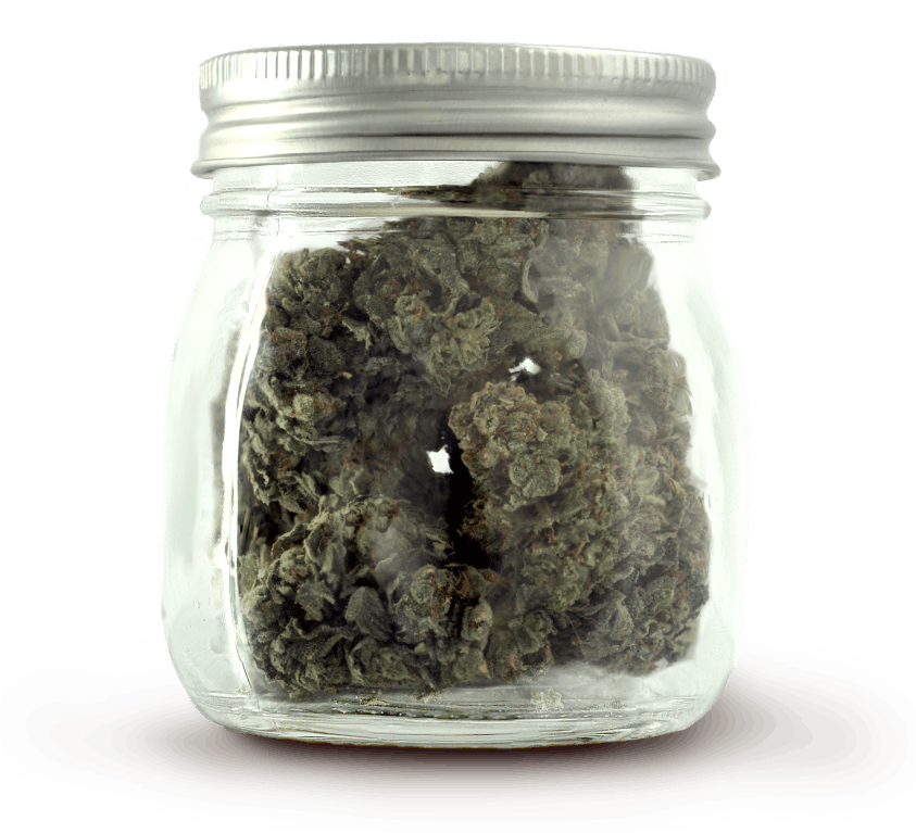 Cannabis buds fill a glass storage container.