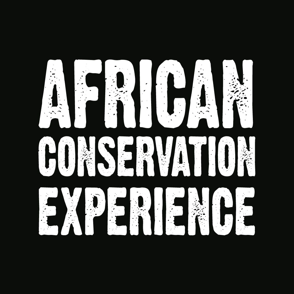Logo for African Conservation Experience