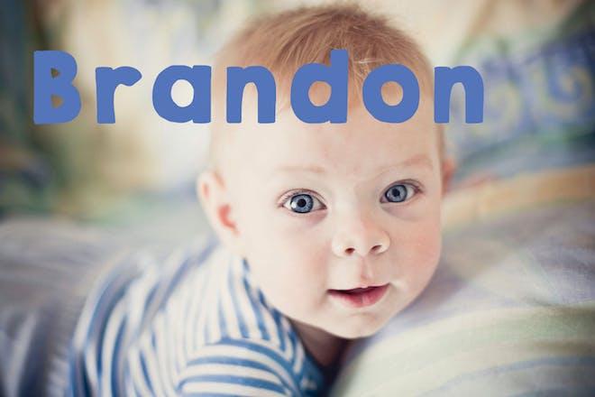 Baby name Brandon
