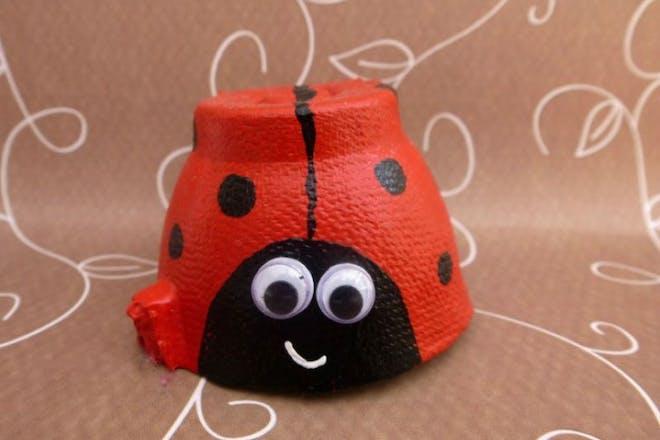 egg box ladybird
