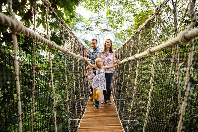 10. Take the 'Edentify' Family Trail at the Eden Project, Cornwall