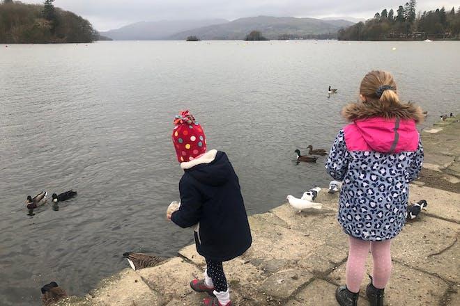 Children feeding swans at Lake Windermere