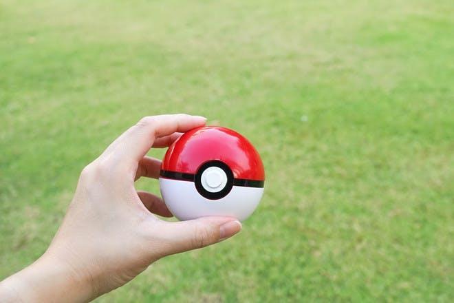 Pokemon Go parties