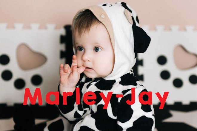 26. Marley-Jay