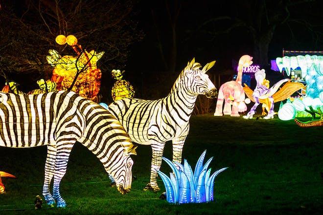 Light sculptures at Thursford's Enchanted Journey of Light