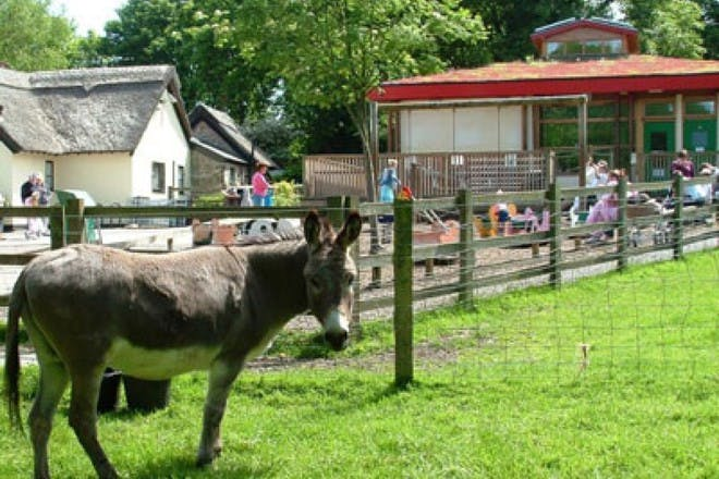 Tam O' Shanter Urban Farm