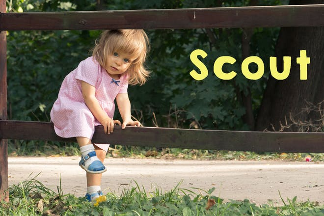 Toddler climbing through fence. Text says Scout