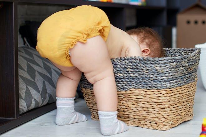 Baby in nappy bending over an looking in wicker basket