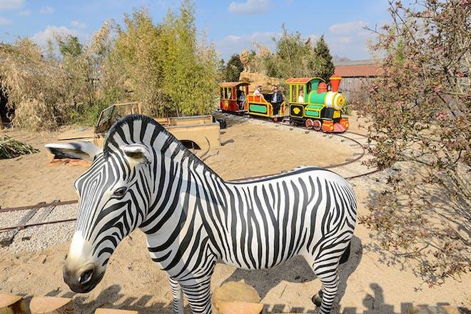 Mini train ride with zebra