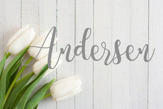13. Andersen