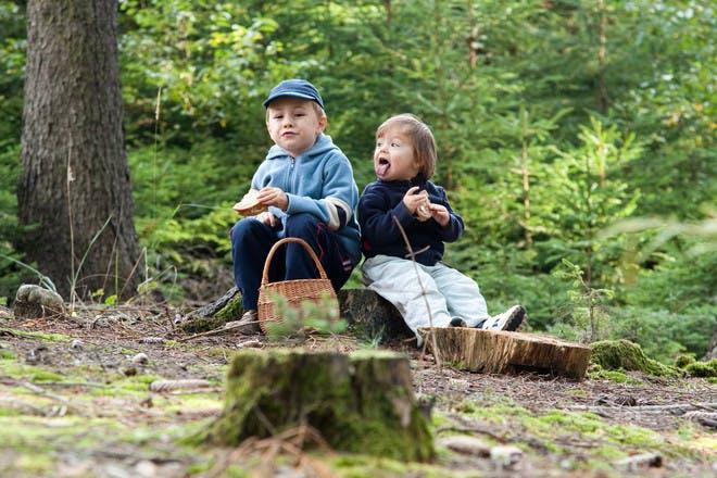 two boys sitting on tree stump