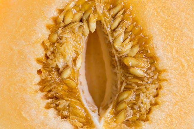 Fruit that looks like a vagina